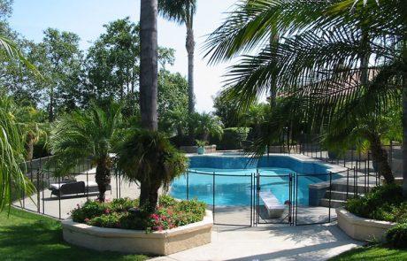 palm tree pool fence